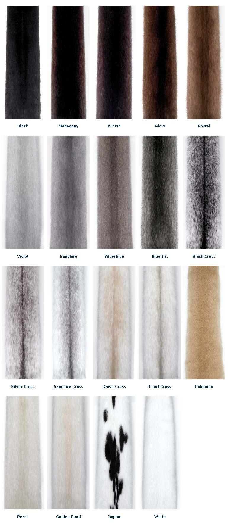 mink-fur-colors.jpg